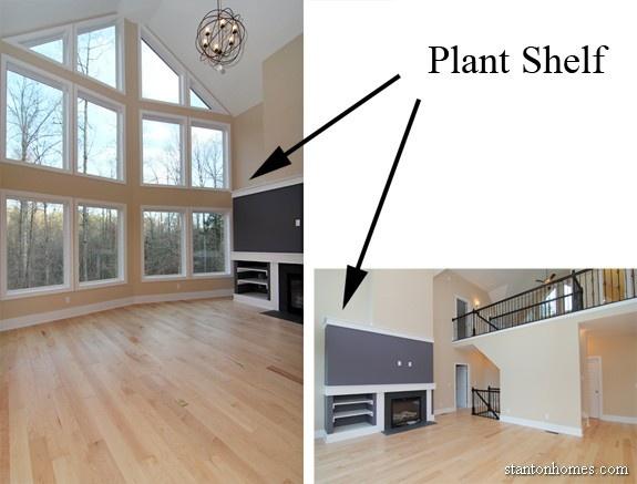 TreehousePlantShelf.jpg